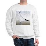 Polish Shortface Pigeon Sweatshirt