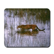 Florida Panther Mousepad