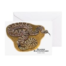 Prairie Rattlesnake Greeting Cards (Pk of 20)