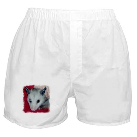 Little Possum Boxer Shorts