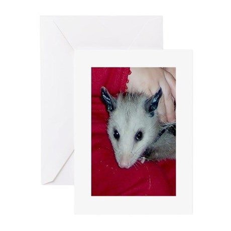 Little Possum Greeting Cards (Pk of 10)