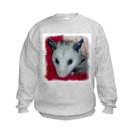 Little Possum Kids Sweatshirt