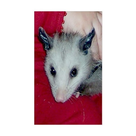 Little Possum Rectangle Sticker