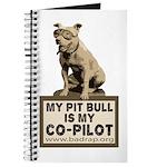 Pit Bull Pilot Journal