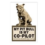 Pit Bull Pilot Postcards (Package of 8)