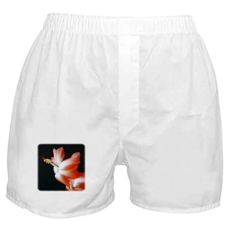 Orange Christmas Cactus Boxer Shorts