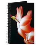 Orange Christmas Cactus Journal