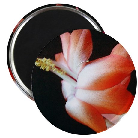 Orange Christmas Cactus 2.25&quot; Magnet (10 pack)