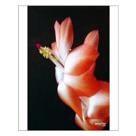 Orange Christmas Cactus Small Poster