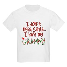 Don't need Santa, Have my Grammy Kids T-Shirt