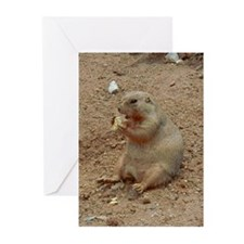 Groundhog's Day Greeting Cards