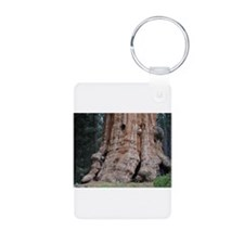 Giant Sequoia Keychains