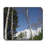 Aspen Trees Mousepad