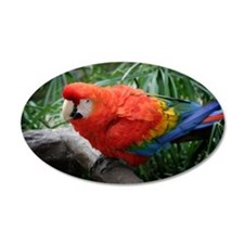 Scarlet Macaw Wall Decal