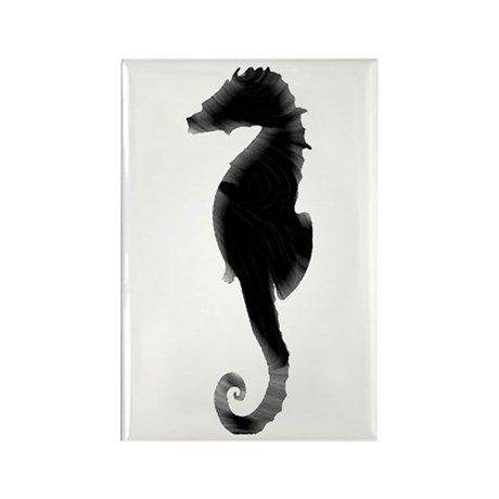 Seahorse Rectangle Magnet (10 pack)