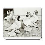 Moorhead Tumbler Pigeons Mousepad