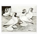 Moorhead Tumbler Pigeons Small Poster