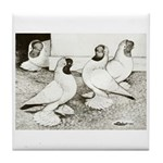 Moorhead Tumbler Pigeons Tile Coaster