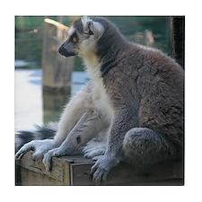 Lemur Tile Coaster