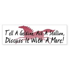 Discuss It With A Mare! Bumper Bumper Sticker