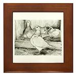 Texan Pioneer Pigeons Framed Tile
