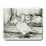 Texan Pioneer Pigeons Mousepad