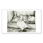 Texan Pioneer Pigeons Rectangle Sticker