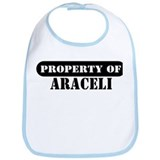 Property of Araceli Bib