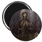 Octopus' lair - Old Photo Magnet