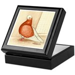 English Shortface Bald Keepsake Box