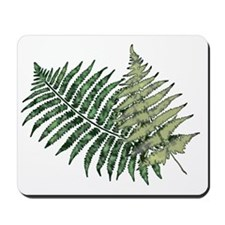 Two Lacy Ferns Mousepad