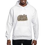 Silly Little Sleeping Bear Hooded Sweatshirt