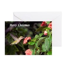 Hummingbird Greeting Cards (Pk of 10)