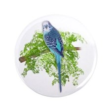 "Blue Budgie on Green 3.5"" Button"