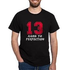13 year birthday designs T-Shirt