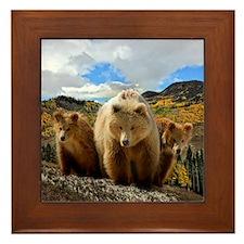 Bear Family Framed Tile