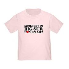 Somebody In Big Sur Loves Me T