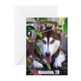 Tess Houston Quick Note Cards (10 Pk)