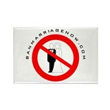 Ban Marriage Now Rectangle Magnet (100 pack)