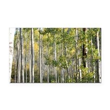 Aspen Forest Rectangle Car Magnet