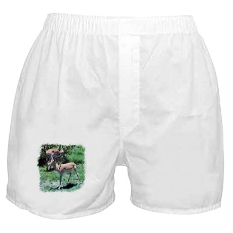 Gazelle Boxer Shorts