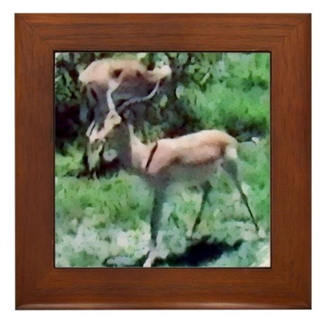 Gazelle Framed Tile