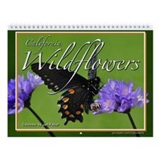 California Wildflowers 12 Month Wall Calendar
