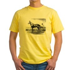 Dan Patch.jpg T-Shirt