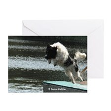 Flying Newf Greeting Cards (Pk of 10)