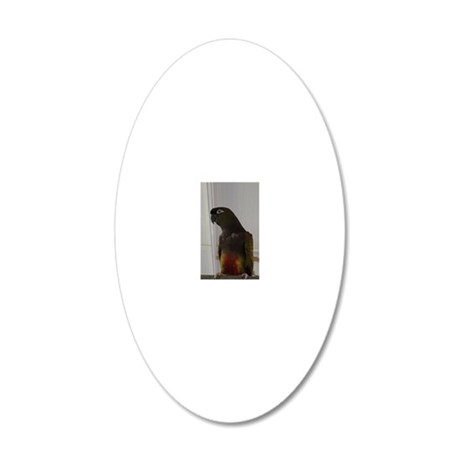 Patagonian Conure 20x12 Oval Wall Decal