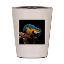 B&G Macaw Shot Glass