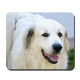 Great Pyrenees Mousepad