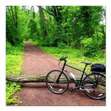 "Bike Trail Square Car Magnet 3"" x 3"""