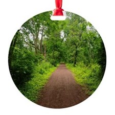 Trail in the Woods Ornament